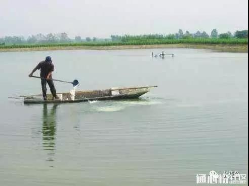 避开渔药商品名称 正确选择和使用各类水产消毒剂