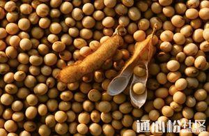 加征关税日步步逼近,豆粕将飙至3500元/吨!饲料会涨价吗?