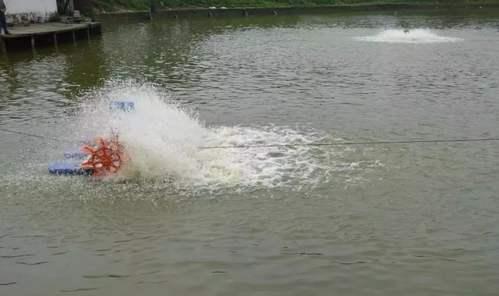 夏季水温高,水产养殖需保持池塘溶解氧,降低池塘耗氧量分量和增氧同等重要