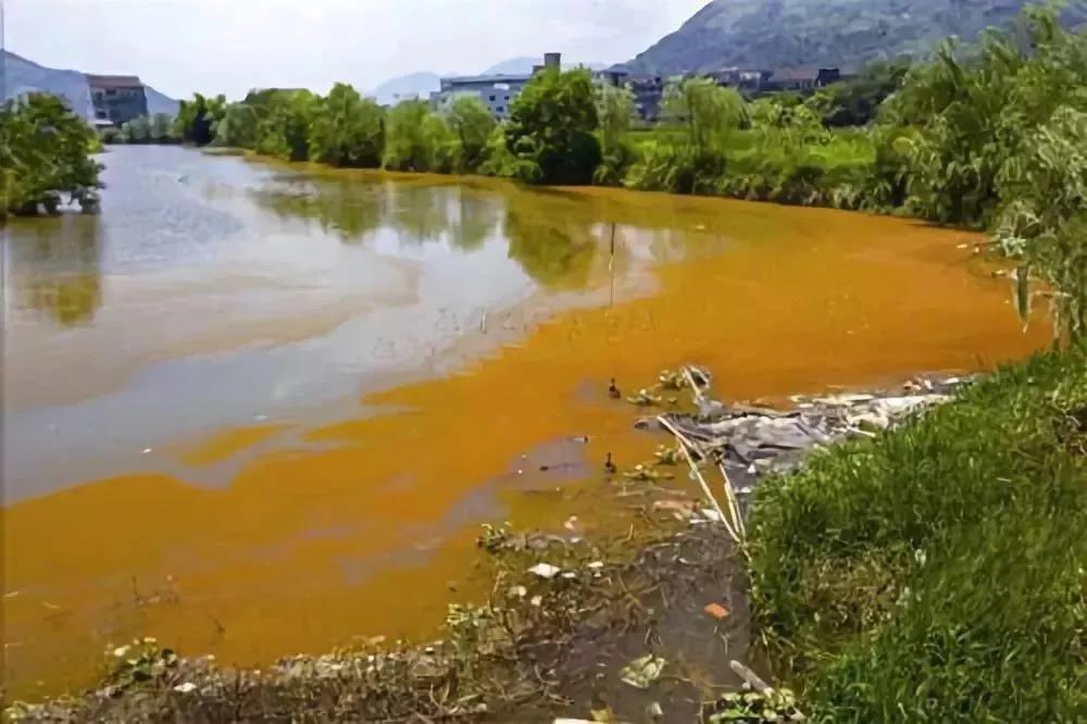 授人以渔!业内老手多年心得总结,教你看透水中的碳氮奥秘,针对性调节水质!