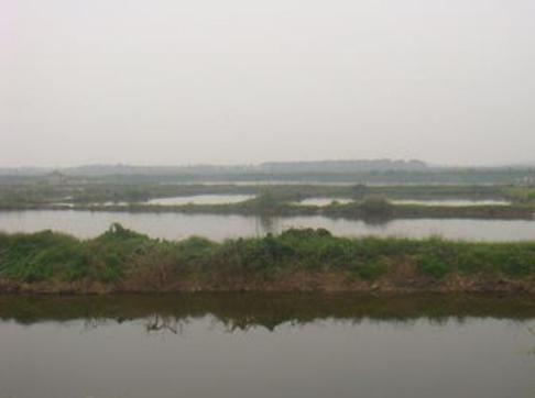 水产养殖风险很大?具体有哪些风险?有哪些防控措施?