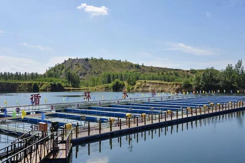 水产人必看!全国水产养殖又缩水1218000亩,未来鱼价会不会大涨?